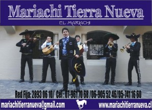 14 de febrero con mariachi tierra nueva .fono:28930610