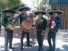sal y tequila mariachis serenatas mariachis