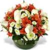 Florer�a a Domicilio: Arreglos Florales, Rosas Ecuatorianas y Ramos