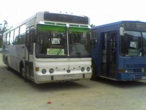 buses económicos para viajes especiales (micros particulares)