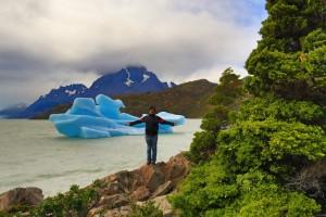 Único tour a colonia de pinguino rey tierra del fuego chile