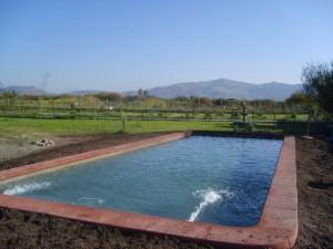 piscinas publicas y privadas  construccion  pisc inas