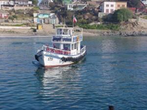 nautical tour s.a. paseos en lancha bahía de quintero horcón