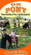 Arriendo de pony o caballos pequeños para eventos infantiles