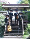 Mariachis delivery 02-7279788